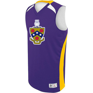 FIJI High Five Campus Basketball Jersey