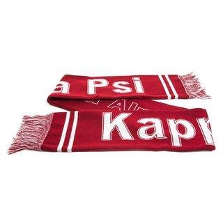 Kappa Alpha Psi Fraternity Knit Scarf
