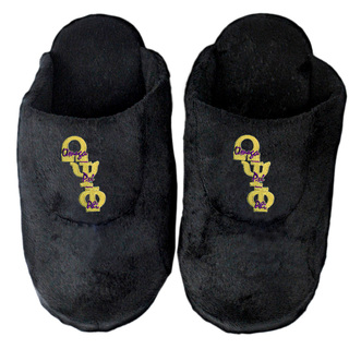 DISCOUNT-Omega Psi Phi Slippers