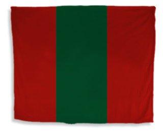Phi Kappa Psi Flag Giant Velveteen Blanket