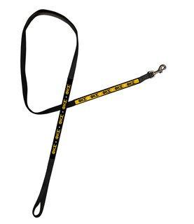 Phi Kappa Sigma Long Dog Leash
