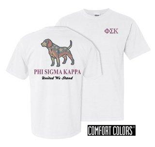 Phi Sigma Kappa United We Stand Comfort Colors T-Shirt
