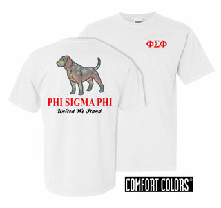 Phi Sigma Phi United We Stand Comfort Colors T-Shirt