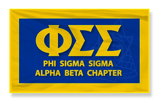 Phi Sigma Sigma 3 X 5 Flag