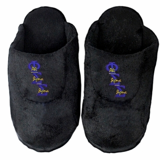 Phi Sigma Sigma Slippers