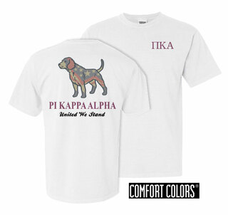 Pi Kappa Alpha United We Stand Comfort Colors T-Shirt