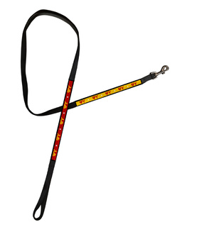 Psi Upsilon Long Dog Leash