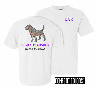 Sigma Alpha Epsilon United We Stand Comfort Colors T-Shirt