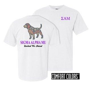 Sigma Alpha Mu United We Stand Comfort Colors T-Shirt