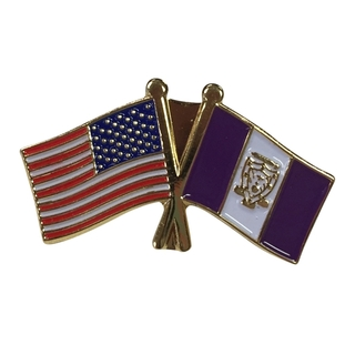 Sigma Alpha Mu USA Flag Lapel Pin