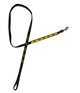 Sigma Nu Long Dog Leash