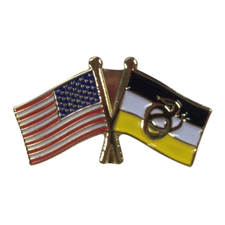 Sigma Nu USA Flag Lapel Pin
