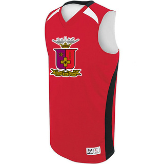 Sigma Phi Epsilon High Five Campus Basketball Jersey