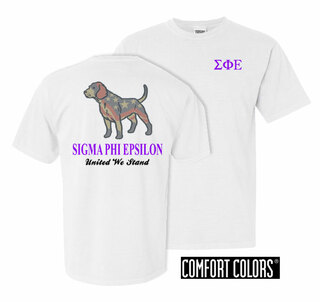 Sigma Phi Epsilon United We Stand Comfort Colors T-Shirt