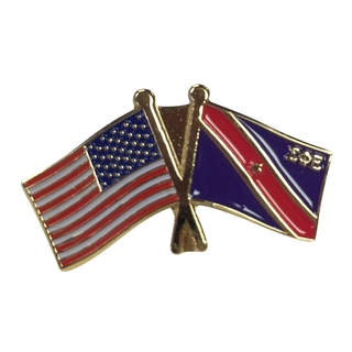 Sigma Phi Epsilon USA Flag Lapel Pin