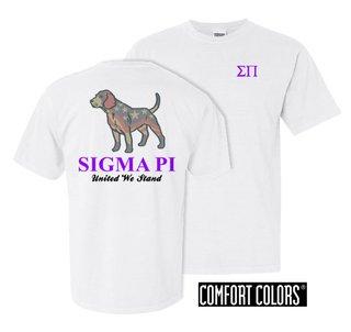 Sigma Pi United We Stand Comfort Colors T-Shirt