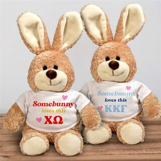 Somebunny Loves Me Stuffed Bunny