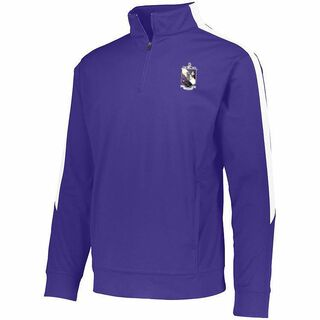 DISCOUNT-Tau Epsilon Phi-  World Famous Greek Crest - Shield Medalist Pullover