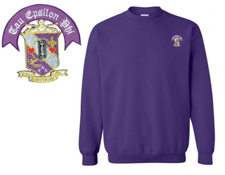 DISCOUNT-Tau Epsilon Phi Patch Crewneck