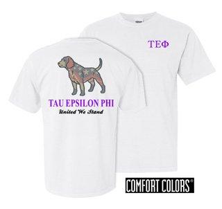 Tau Epsilon Phi United We Stand Comfort Colors T-Shirt