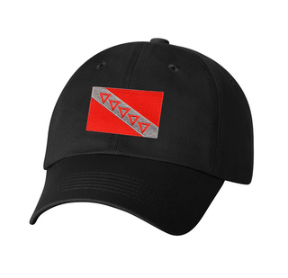 CLOSEOUT - Tau Kappa Epsilon Flag Patch Baseball Hat