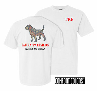 Tau Kappa Epsilon United We Stand Comfort Colors T-Shirt