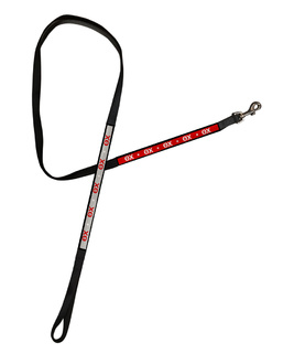 Theta Chi Long Dog Leash