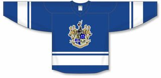 Theta Delta Chi League Hockey Jersey