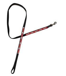 Triangle Long Dog Leash