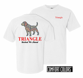 Triangle United We Stand Comfort Colors T-Shirt