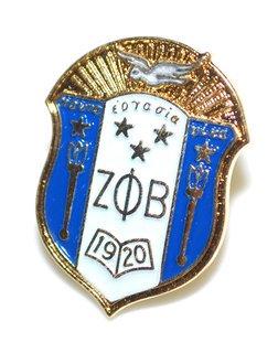 Zeta Phi Beta 3D Color Shield Pins