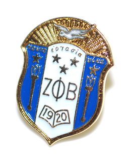 Zeta Phi Beta 3D Color Shield Pins