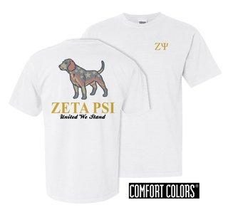 Zeta Psi United We Stand Comfort Colors T-Shirt