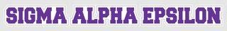 Sigma Alpha Epsilon Long Window Sticker