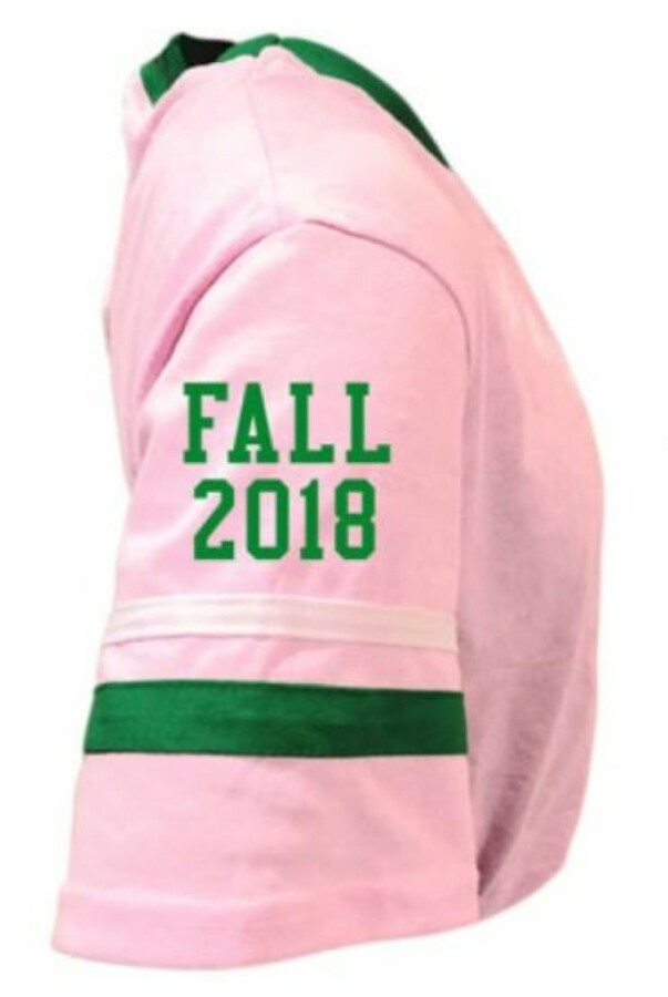 Alpha Kappa Alpha Jersey W/ Custom Sleeves