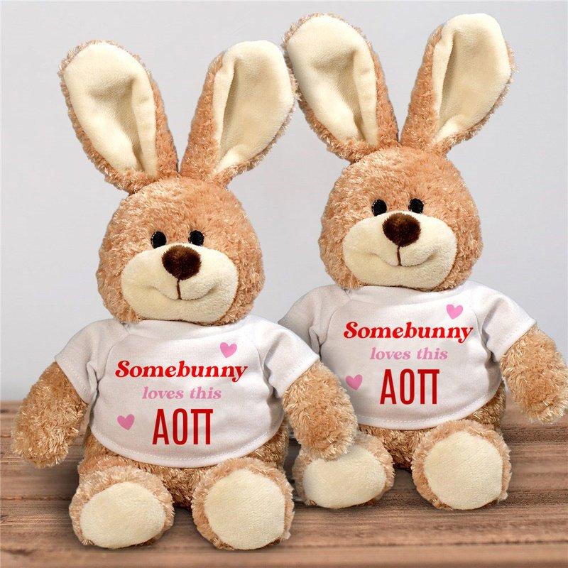 Alpha Omicron Pi Somebunny Loves Me Stuffed Bunny