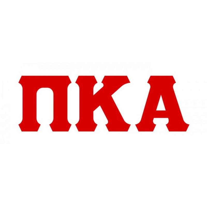Pi Kappa Alpha Big Greek Letter Window Sticker Decal