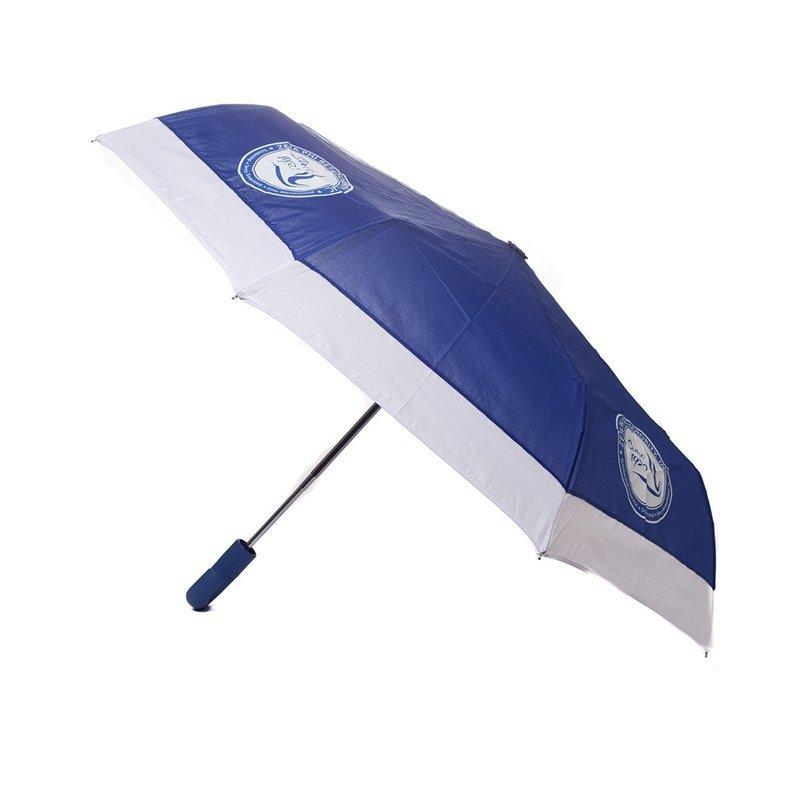 Zeta Phi Beta Mini Hurricane Umbrella