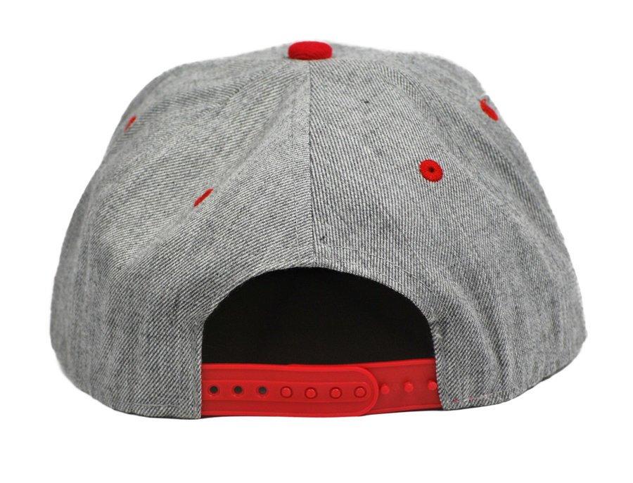 Phi Sigma Kappa Flatbill Snapback Hats Original