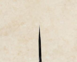 Moritaka AS Kiritsuke 210mm