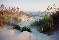 Dunes Path Giclee
