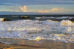 Golden Surf Giclee