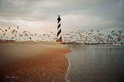 Ken Buckner's Hatteras Lighthouse Giclee