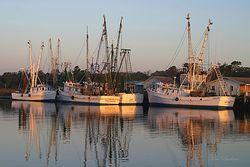Morning Shrimp Boats Giclee