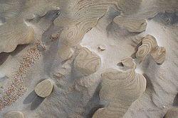 Sand and Wind Giclee