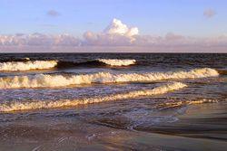 Summer Surf Giclee
