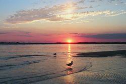 Waterway Sunset Giclee