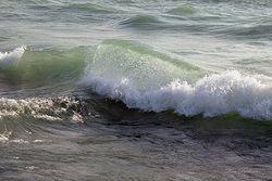 Wave Giclee