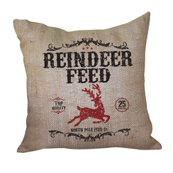 Reindeer Feed Pillow <font color=a8bb35> Discontinued</font>