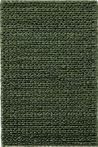 Jute Woven Evergreen Rug